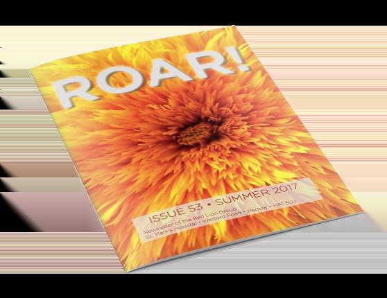 ROAR! Magazine